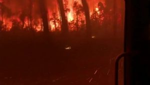 Australia fires: More than 200 homes burn down on coast