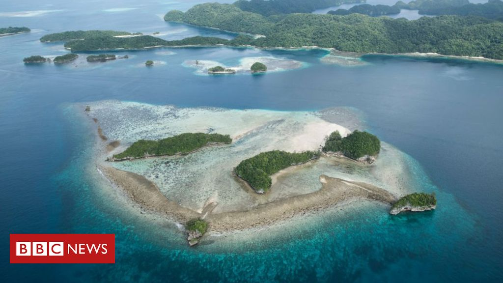 Palau is first country to ban 'reef toxic' sun cream